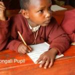 9. Gongali-Ph2-Pupil